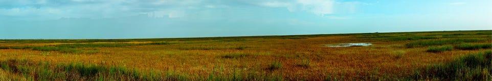 Panarama der Sumpfgebiete Lizenzfreie Stockfotos