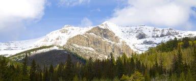 Panaramic Mountain Scene Stock Images
