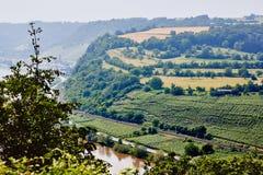 Panaramicmening van hierboven aan de de rivier en heuvels van Moezel met bomen en wijngaarden wordt behandeld die royalty-vrije stock foto's