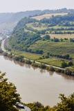 Panaramicmening van hierboven aan de de rivier en heuvels van Moezel met bomen en wijngaarden wordt behandeld die royalty-vrije stock fotografie
