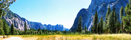 Panaroma Yosemite Meadows Royalty Free Stock Photography