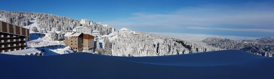 Panaromic Scene in Winter and Snow Royalty Free Stock Photo