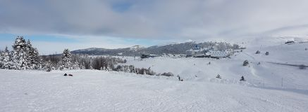 Panaromic scene in Winter and Snow Royalty Free Stock Photos