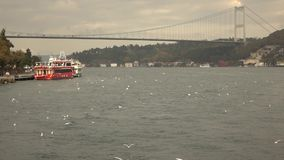 Panasonic view to 15 July Martyrs Bridge on a background of sunset cloudy sky with flying birds. Bosphorus strait stock footage