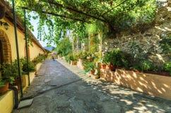 Panayia Pantanassa修道院, Mystras,希腊 库存图片