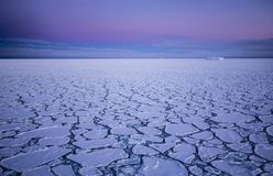 Pancake ice at southern ocean. Pancake ice formations near South Sandwich Islands, Southern Ocean Royalty Free Stock Image