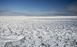 Pancake ice at southern ocean. Pancake ice formations near South Sandwich Islands, Southern Ocean Stock Image