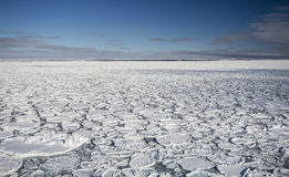 Pancake ice at southern ocean Royalty Free Stock Image