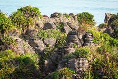 Pancake Rocks of Punakaiki Royalty Free Stock Image