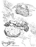 Pancake and syrup and steak with vegetable drawing Stock Photography