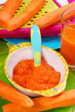 Carrot puree for baby Stock Photos