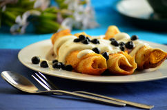 Pancakes with cottage cheese and blueberries Royalty Free Stock Photography