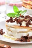 Pancakes with curd cheese Royalty Free Stock Photo