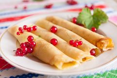 Pancakes decorated with red currant berries. Stock Images