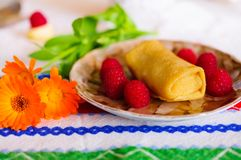 Pancakes with filling. Royalty Free Stock Photos