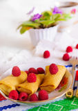 Pancakes with filling. Royalty Free Stock Images
