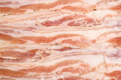 Pancetta belly bacon Royalty Free Stock Photos