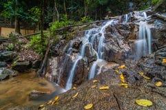 Panchur vattenfallkenyir från rätt Fotografering för Bildbyråer