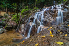 Panchur waterfall kenyir from right Stock Image