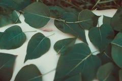 Pancia di una ragazza coperta di foglie Fotografia Stock