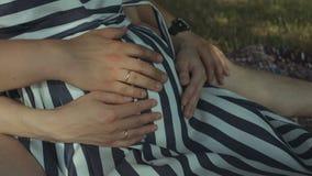 Pancia incinta commovente delle mani dei genitori all'aperto archivi video