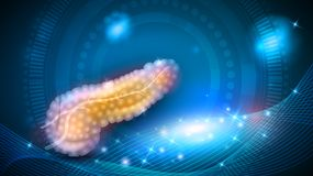 Pancreas on a glowing background Stock Photography