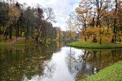 Pand dans la forêt d'automne Image libre de droits