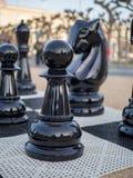 Pand en ridderschaakstukken in reuzeschaakreeks royalty-vrije stock fotografie