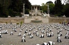 Panda à Rome Photos libres de droits