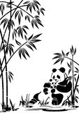panda Royaltyfri Fotografi
