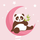 Panda. Asia panda and a sky moon Stock Photography