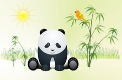 Panda. Children's illustration, Panda on a glade, Parrot on a branch, The sun shines Stock Image