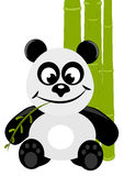 Panda. In front of bamboo Stock Photography