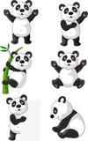 Σύνολο χαρτοκιβωτίων Panda Στοκ Φωτογραφίες