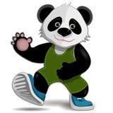 Panda illustration stock