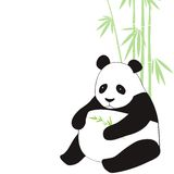 Panda. Vector illustration of panda and bamboo Royalty Free Stock Photo