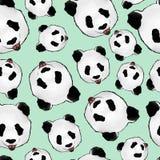 Panda photos libres de droits