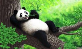 Panda Lizenzfreie Abbildung