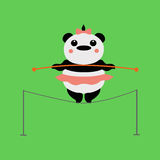 Panda acrobat. Circus, Panda acrobat, tightrope Walker Royalty Free Stock Images