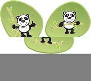 Panda-Akrobatik Stockbild
