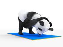 Panda animal del personaje del carácter que hace yoga ilustración del vector