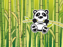Panda with babmboo. Vector Panda with green babmboo background Stock Photography
