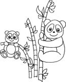Panda with bamboo. Two pandas with bamboo. vector image Royalty Free Stock Photography