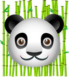 Panda with Bamboo Background. Cute panda with bamboo background Royalty Free Stock Image