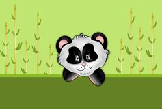 Panda with bamboo background Royalty Free Stock Image