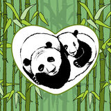 Panda on bamboo background Stock Photo