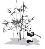 Panda with bamboo branch. Panda with a bamboo branch on a white background Stock Image
