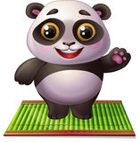 Panda on bamboo carpet. Cute little panda is standing on bamboo carpet Stock Images
