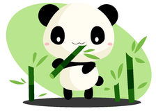 Panda and Bamboo Stock Photo