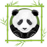 Panda in the bamboo frame Royalty Free Stock Photo